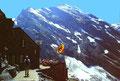 Gspaltenhornhütte, Terrasse und Blümlisalpmassiv mit Morgenhorn Nordostwand