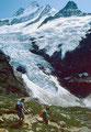 Oberer Grindelwaldgletscher mit Schreckhörnern beim Abstieg zur Glecksteinhütte