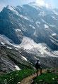 Die Morgenhorn Nordostwand vom Weg zur Gpsaltenhornhütte