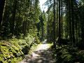 Der Verbindungsweg zwischen vorderem und hinterem Gosaukamm