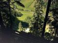 """""""Tiefblick"""" vom Steig auf den Talgrund bei Häusling"""