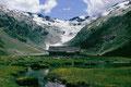 Die von mäanderenden Bächen umgebene Alp Fex