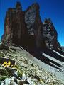 Gelber Alpenmohn im Farbkontrast zu den schattigen, dunklen Nordwänden der Drei Zinnen