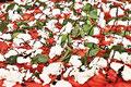 Foodfotografie - Tomaten und Mozzarella - Hamburg - Dedic Fotografie