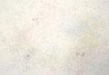 """「ささやき」 SM (22.7×15.8cm) ケント紙、鉛筆、水彩 作家蔵    """"Whisper""""  drafting paper, pencil, water color"""