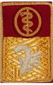 Chefarzt Stv. LPD