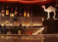 """Colorado, Denver, """"Benders Tavern"""" - fotografia di Vittorio Ferorelli"""