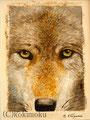 オオカミ BPStechnique+acrylic 180x130mm