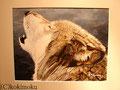 オオカミ acrylic 320x410mm