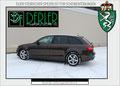 Audi A4 mit 85% Tönung