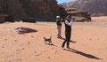 Le chat du désert