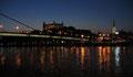 Le château vu de l'autre rive du Danube