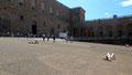 devant Palazzo Pitti à Florence