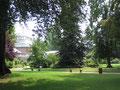 Le jardin botanique et la serre