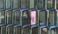 Reflet dans une cellule de la Harpa à Rykjavik (aucun trucage)