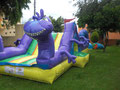 INFLABLE RANDALL 6 X 4.5 X 2.20