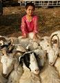 Viehhändlerin