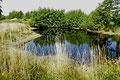 Ein Teich auf der Insel