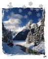 Weiße Wintertraum