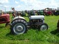Un cimetière de vieux tracteurs à La Freté Hauterive