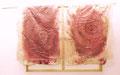 Atem, Leinwand, Keilrahmen, Silikon, Seide, Samen, Pigmente, Dreck, ca. 215 x 151 cm