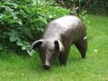 Betonfigur-Gartenfigur-Schwein-Bronzeoptik