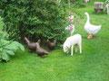 """Betonfiguren-Gartenfiguren-Tiere-""""Gruppenbild"""""""