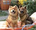 Ronja & Ylvi