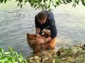 """Ronja wird gewaschen ... das Fisch-""""Parfüm"""" ist für menschliche Nasen nicht auszuhalten ;-)))"""