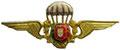 Гражданский парашютист(с гербом) ЦЕНА 500 руб.