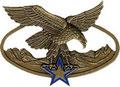 Командир группы горных егерей. ЦЕНА 580 руб.