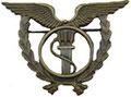 Интендант ВВС. ЦЕНА 700 руб.