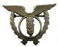Специальность ВВС. ЦЕНА 700 руб. №2