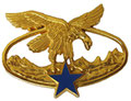Квалификационный знак горных егерей(золотой). ЦЕНА 580 руб.