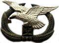 Беретный знак ВВС. ЦЕНА 480 руб.