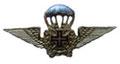 Гражданский парашютист(с крестом). ЦЕНА 480 руб.