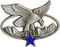 Командир отряда альпийских стрелков(серебряный по цвету). ЦЕНА 550 руб.