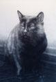 猫 銅板画