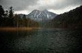 Der Schwanensee mit Blick zum Säuling