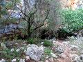 The mouth of Megali Grava Loutson cave.