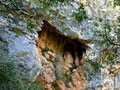 In the rock wall above the cave there are several deep holes.