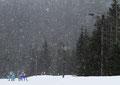 2010 Biathlon @ Whistler Paralympic Park