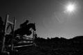 2011 Equitation @ Baji Kouen