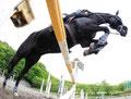 2012 Equitation @ Sagamihara-shi Kanagawa