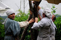 Xavier, Lucien et Damien de la Cie Il Pleut dans ma Bouche