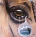 """""""Rêve"""" - toile 2009 - 50x50 cm - 320 €"""
