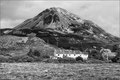 Mt. Errigal / Co. Donegal