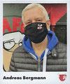 Sticker 23: Andreas Bergmann; #Team Hamburg; Juststickit / Panini
