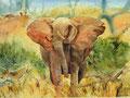 Ostafrika 40x50cm verkauft