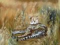 Jagdpause, Pastell 50x60,(c)D.Saul 2011,Gepard